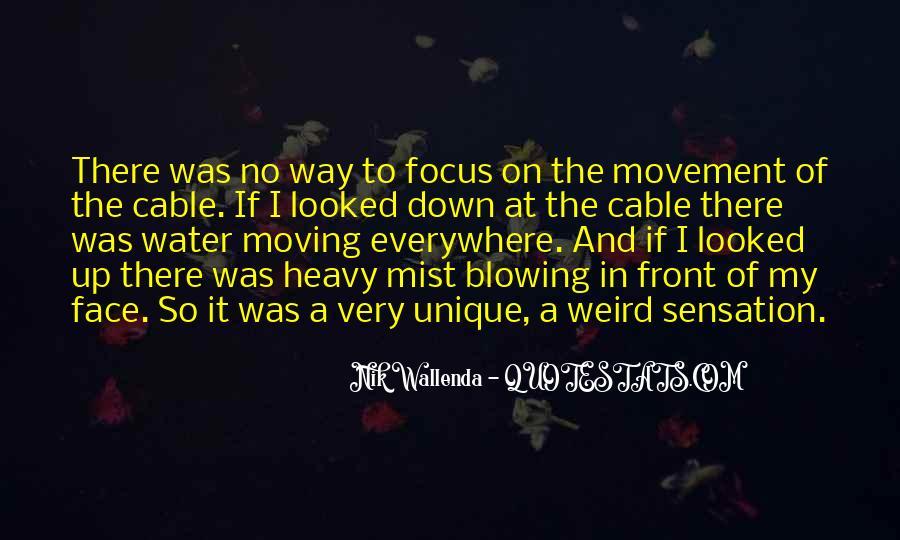 Nik Wallenda Quotes #1044308