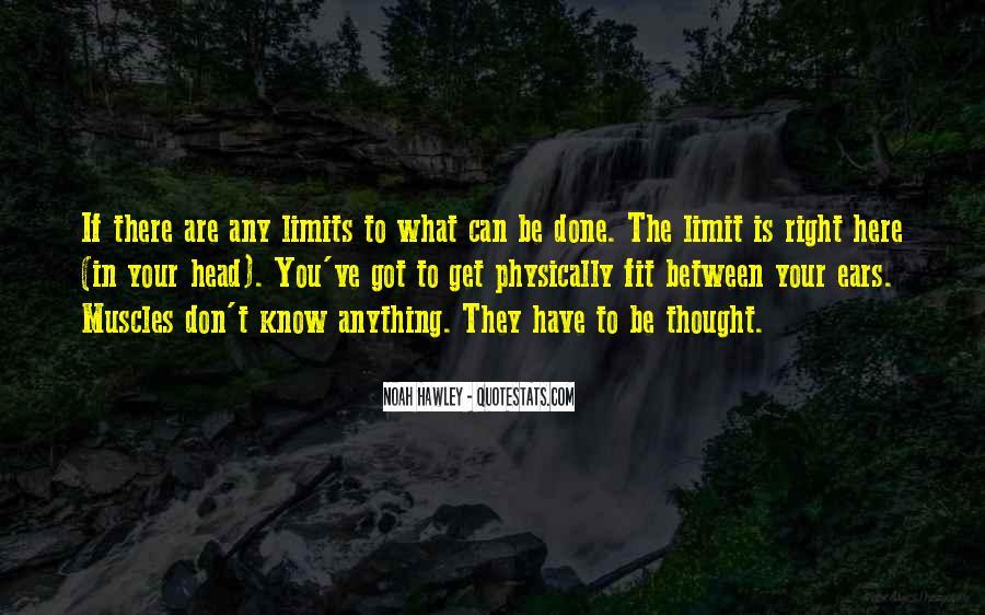 Noah Hawley Quotes #785523