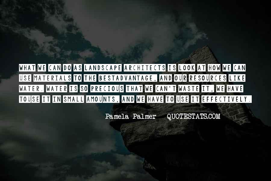 Pamela Palmer Quotes #740611