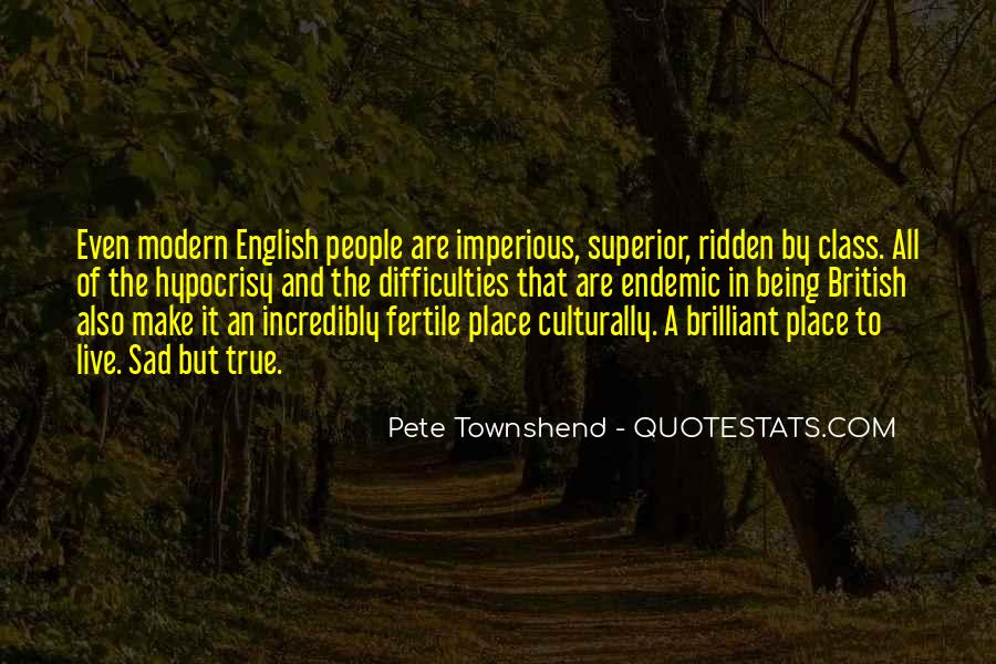 Pete Townshend Quotes #1733639
