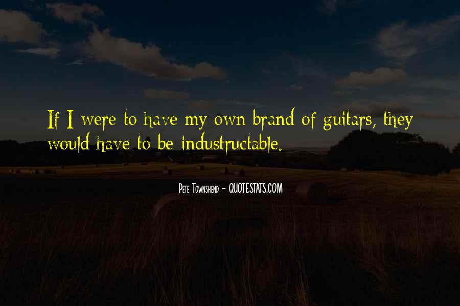 Pete Townshend Quotes #698807