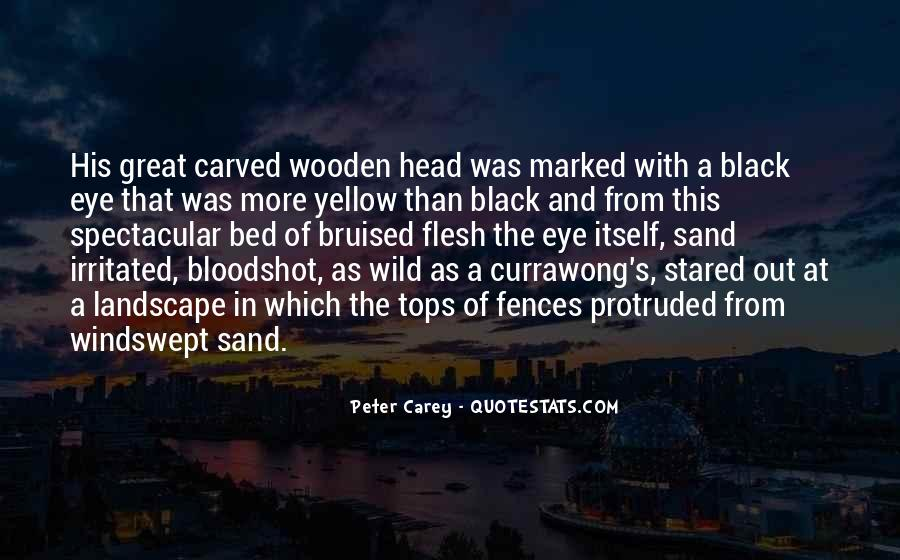 Peter Carey Quotes #1170853