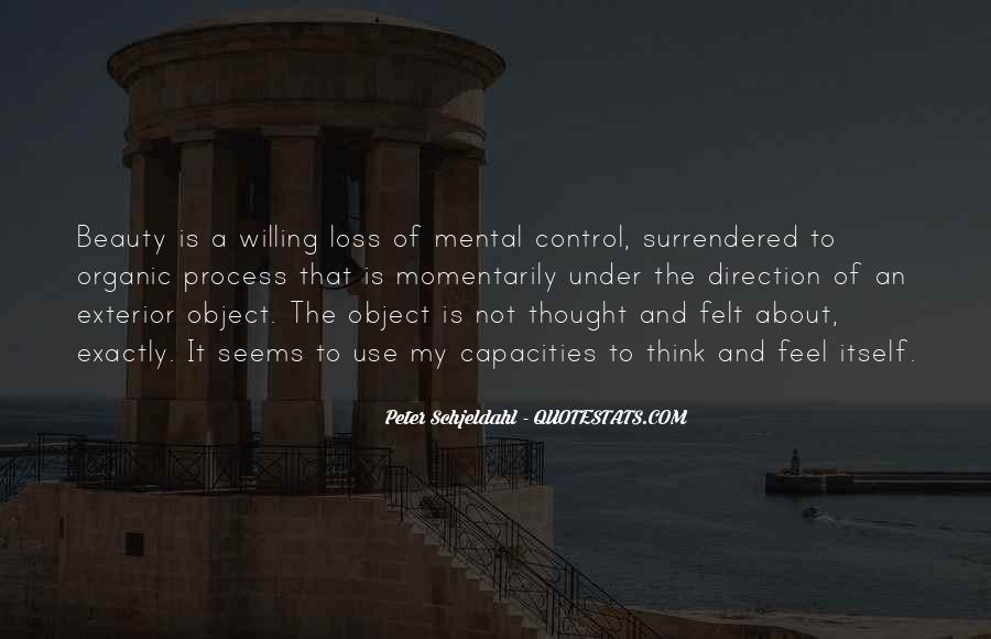 Peter Schjeldahl Quotes #1148216