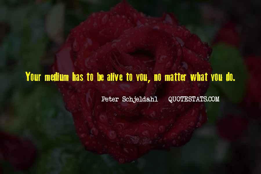 Peter Schjeldahl Quotes #1791513