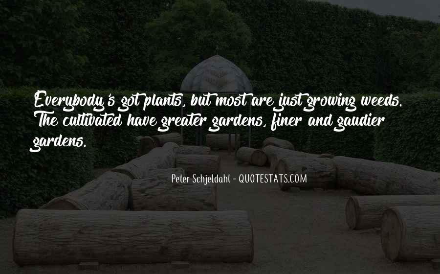 Peter Schjeldahl Quotes #20694