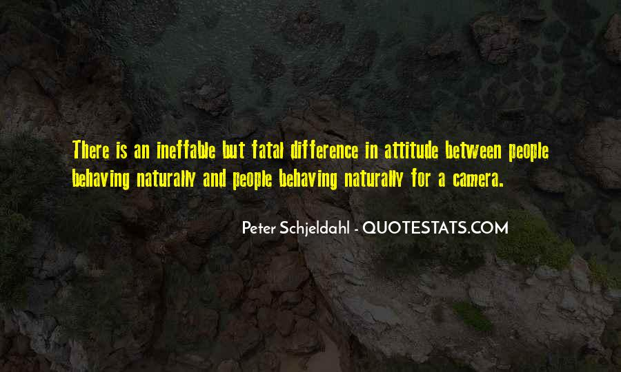 Peter Schjeldahl Quotes #714843