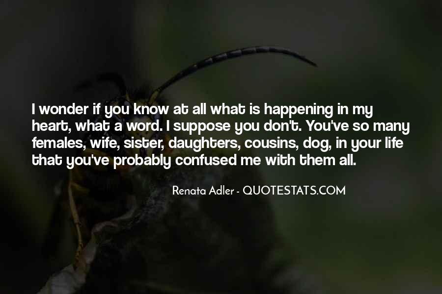 Renata Adler Quotes #587554