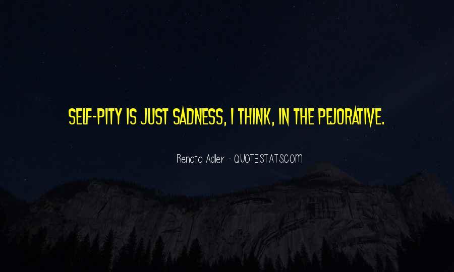 Renata Adler Quotes #774421
