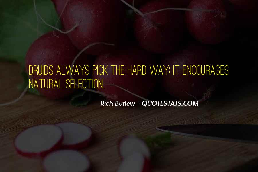Rich Burlew Quotes #589922