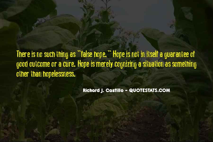Richard J. Castillo Quotes #1198424