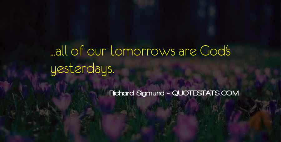 Richard Sigmund Quotes #1830583
