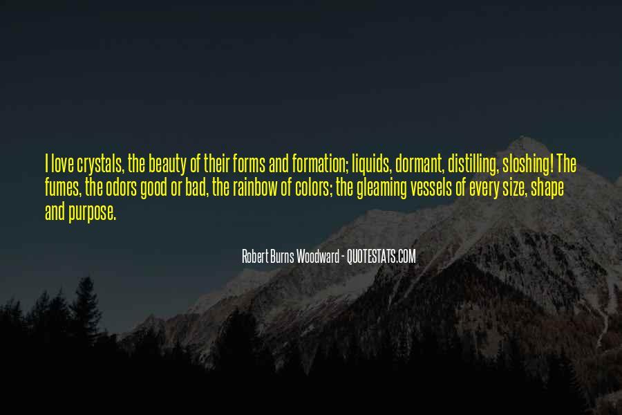 Robert Burns Woodward Quotes #832939
