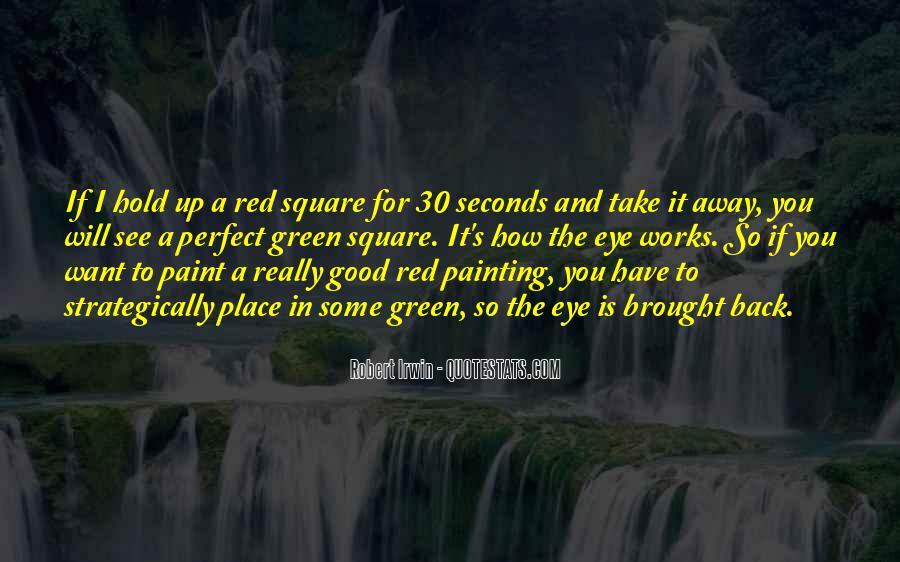 Robert Irwin Quotes #105168