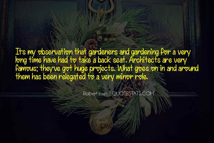 Robert Irwin Quotes #1608652