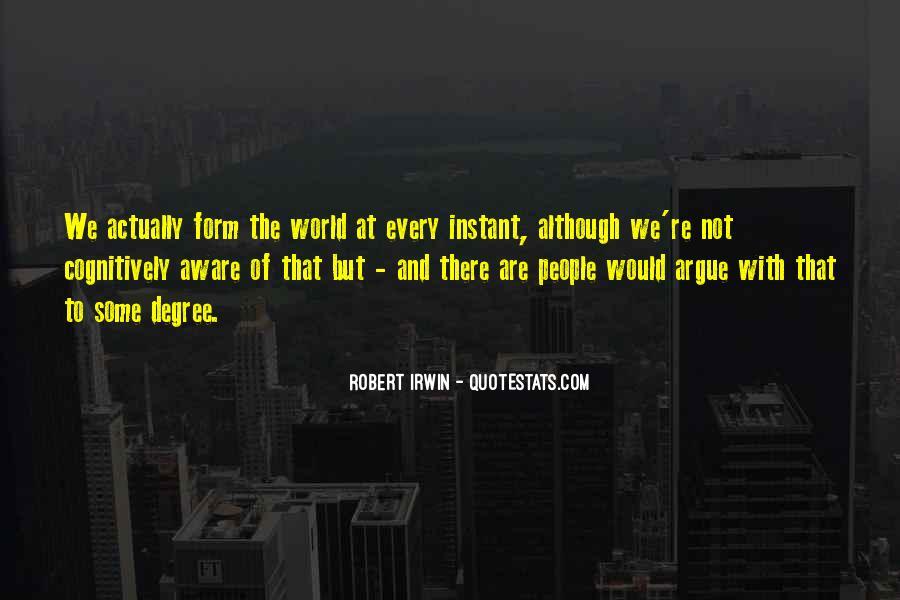Robert Irwin Quotes #1779956