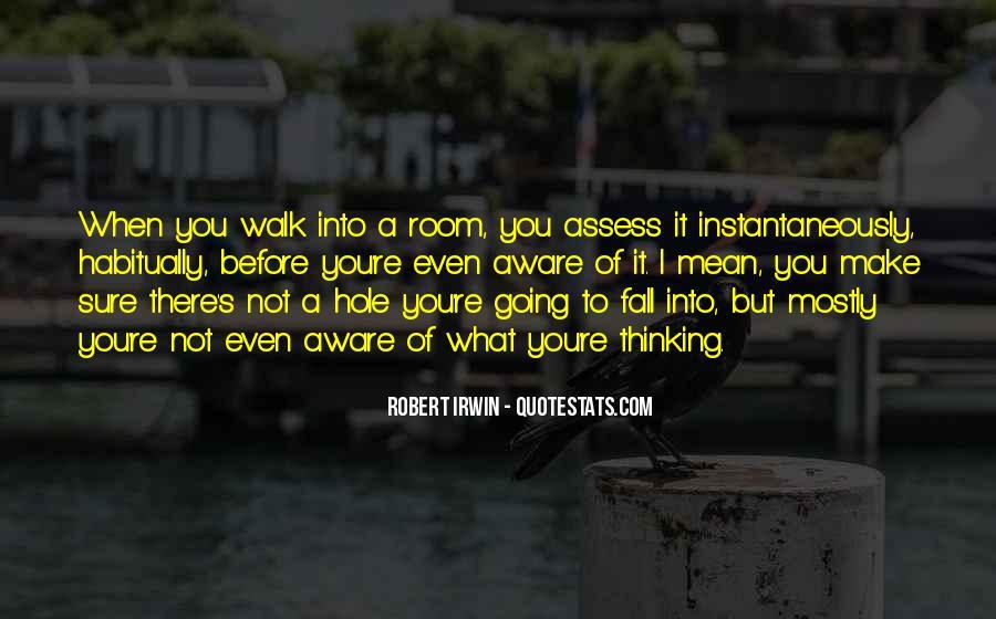 Robert Irwin Quotes #6896