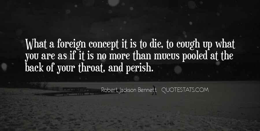 Robert Jackson Bennett Quotes #1062686