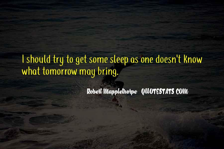 Robert Mapplethorpe Quotes #388009