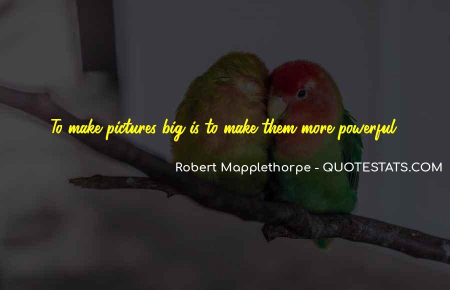 Robert Mapplethorpe Quotes #490745