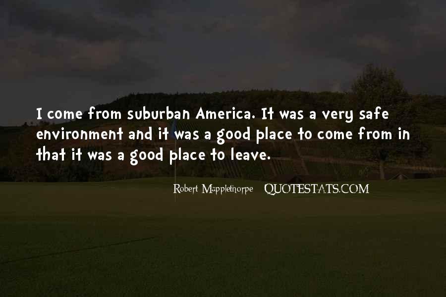 Robert Mapplethorpe Quotes #784492