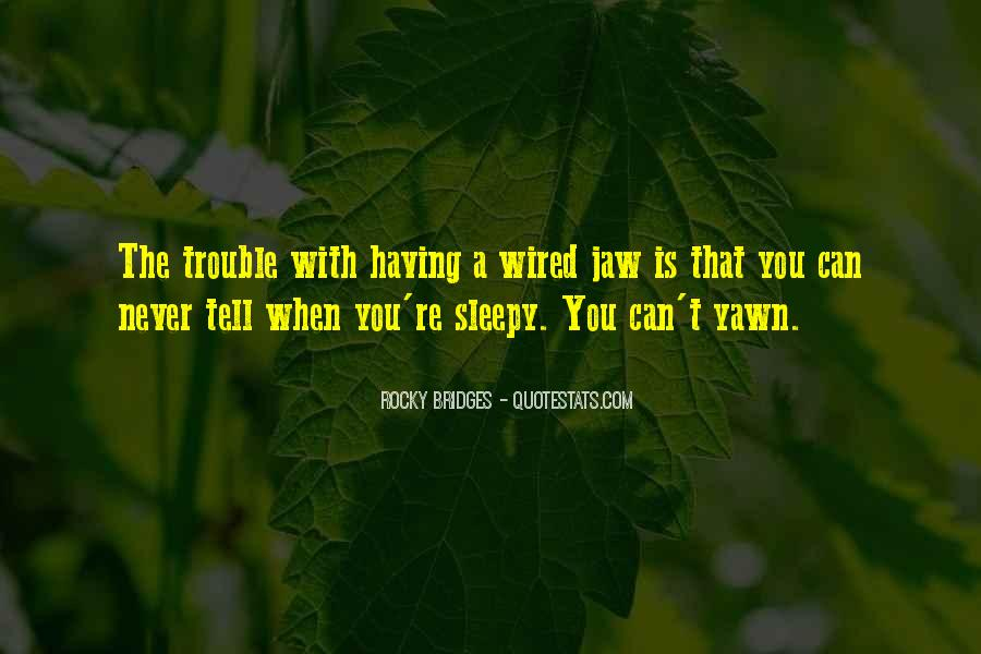 Rocky Bridges Quotes #434802