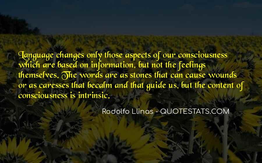 Rodolfo Llinas Quotes #1870178