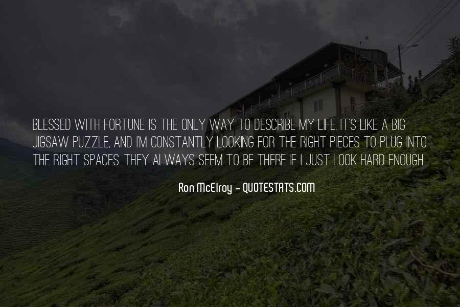 Ron McElroy Quotes #567737