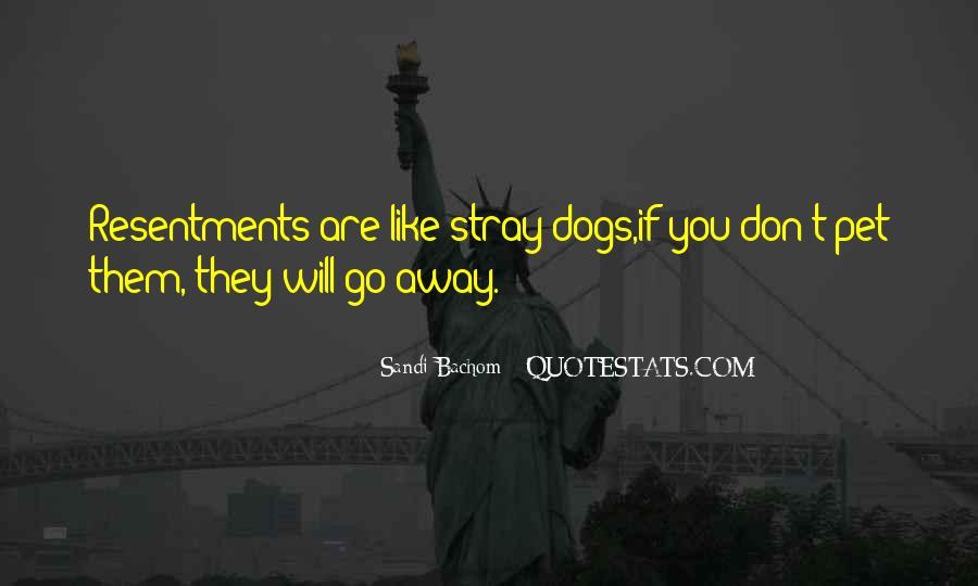 Sandi Bachom Quotes #277956