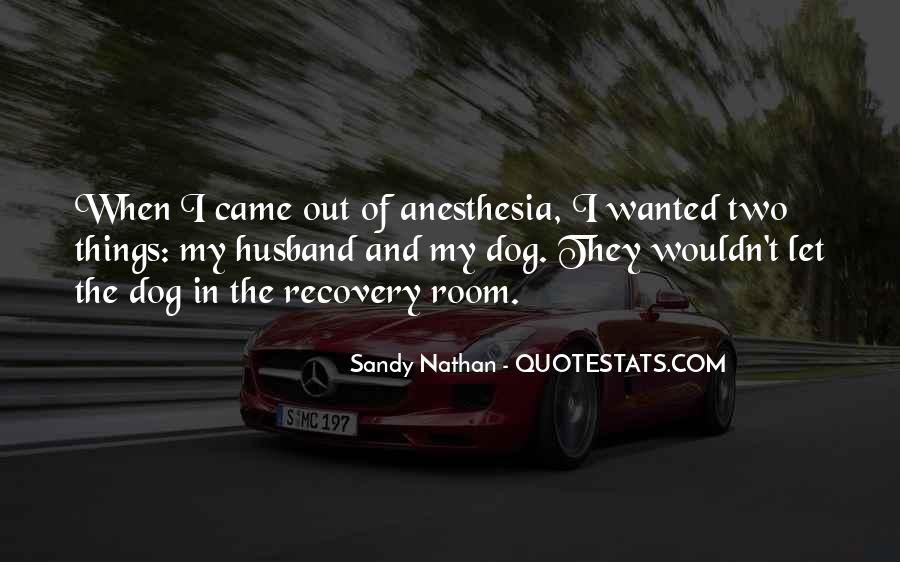 Sandy Nathan Quotes #1221726