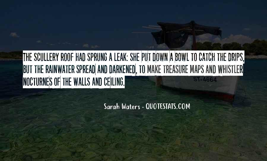 Sarah Waters Quotes #633185