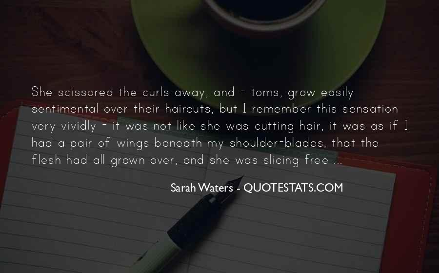 Sarah Waters Quotes #973085