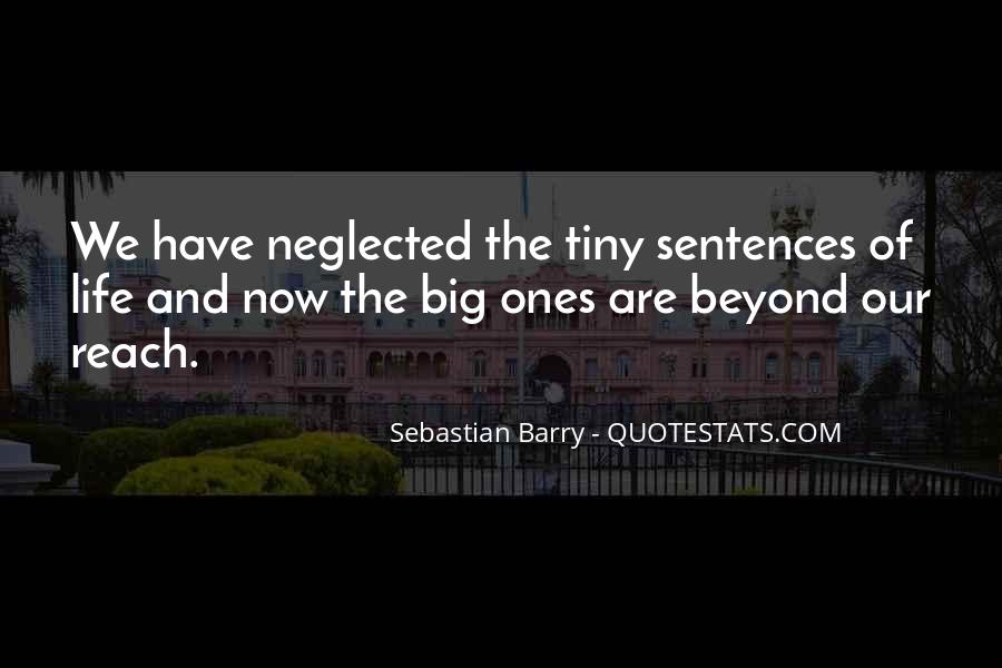 Sebastian Barry Quotes #1529995