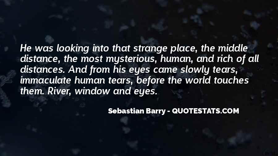 Sebastian Barry Quotes #1571065