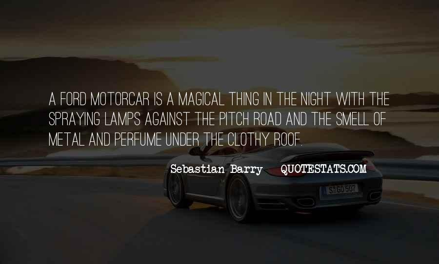 Sebastian Barry Quotes #421935