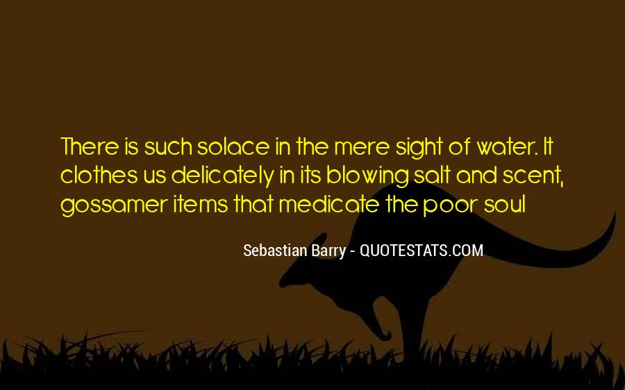 Sebastian Barry Quotes #428556