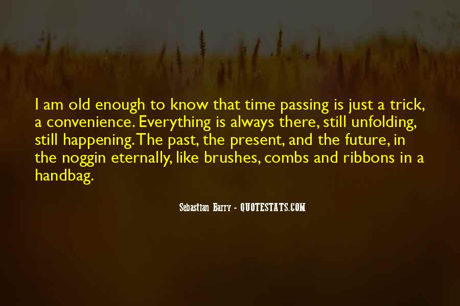 Sebastian Barry Quotes #668246