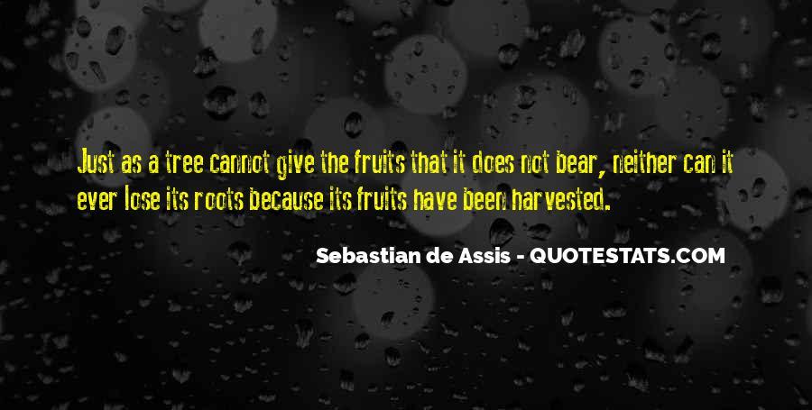 Sebastian De Assis Quotes #899833