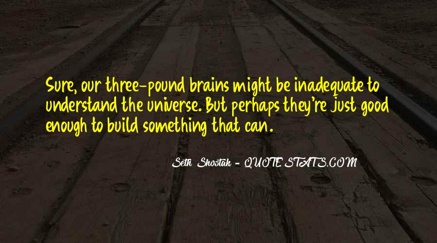 Seth Shostak Quotes #40845
