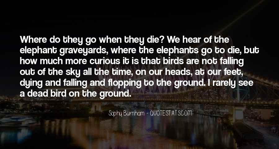Sophy Burnham Quotes #1583095