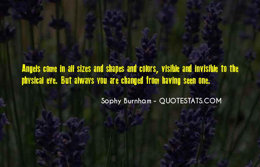 Sophy Burnham Quotes #244352