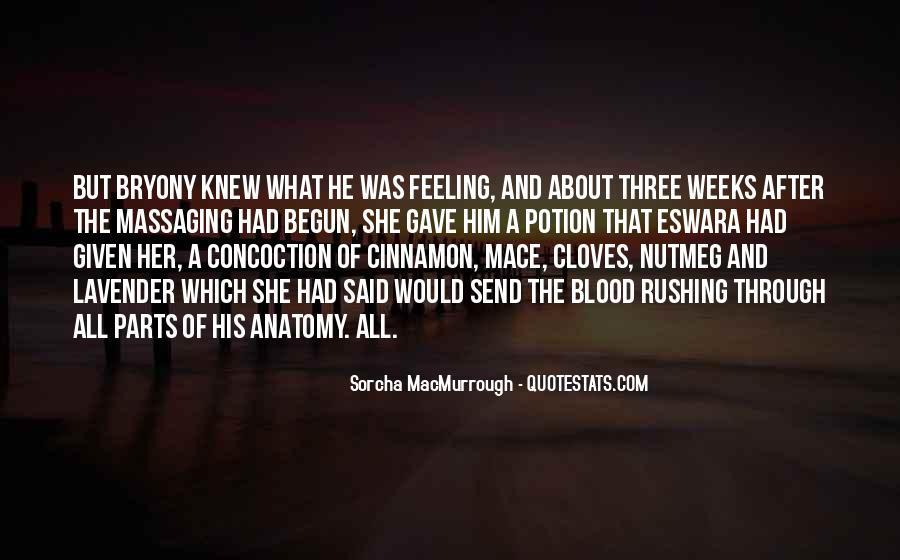Sorcha MacMurrough Quotes #1477863