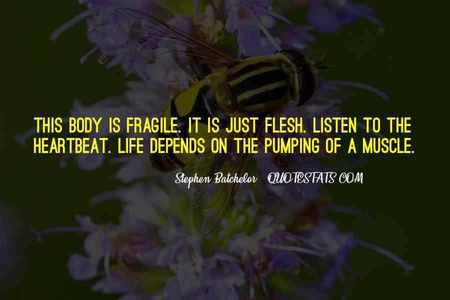 Stephen Batchelor Quotes #1500699