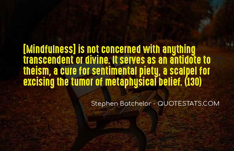 Stephen Batchelor Quotes #1639745