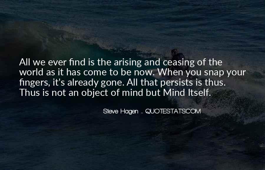 Steve Hagen Quotes #1725447
