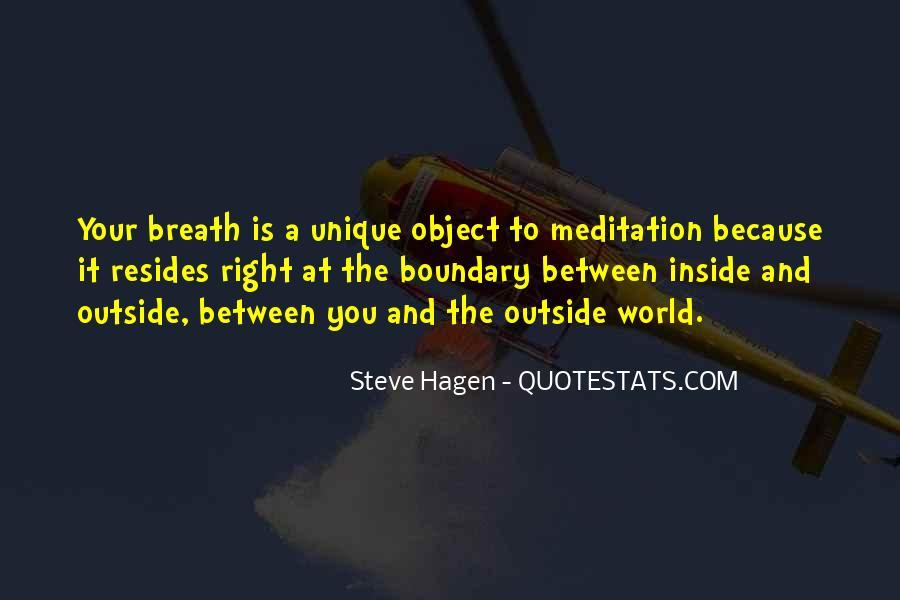 Steve Hagen Quotes #464642