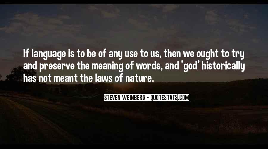 Steven Weinberg Quotes #1399081