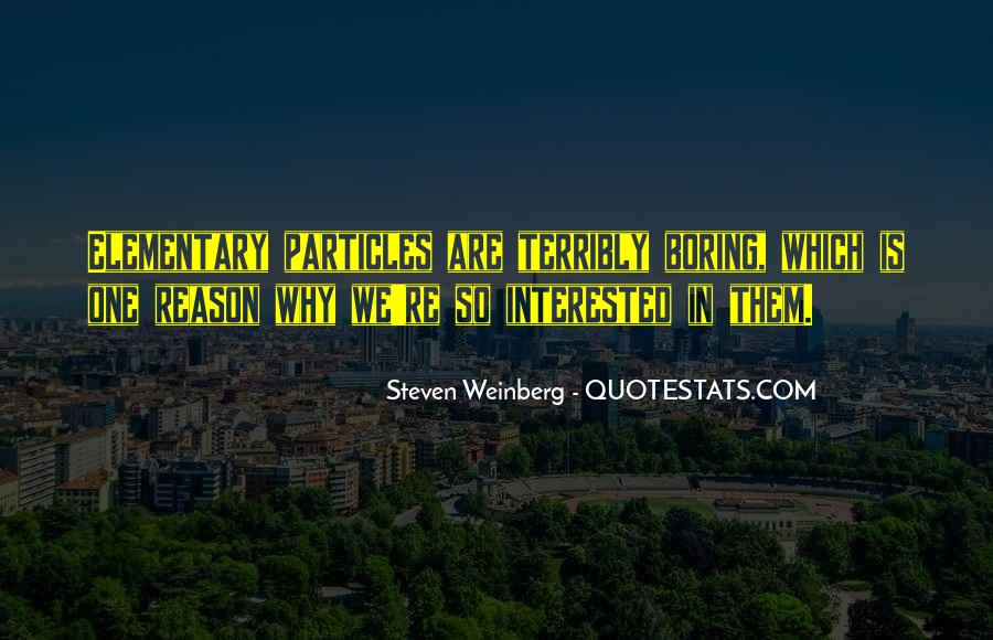 Steven Weinberg Quotes #461054