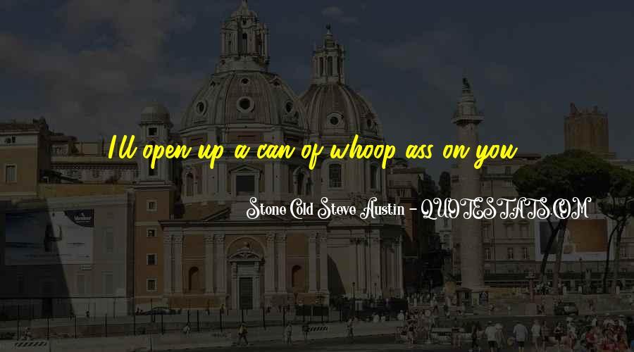 Stone Cold Steve Austin Quotes #1549045