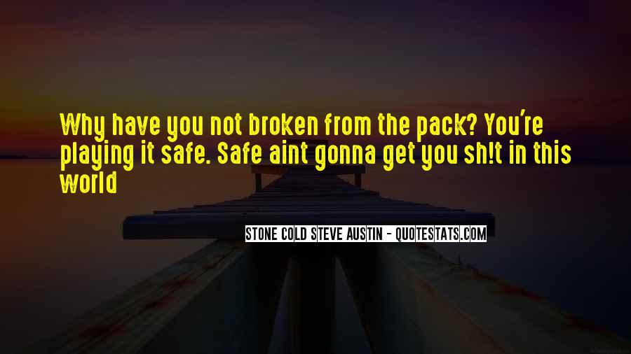 Stone Cold Steve Austin Quotes #598619