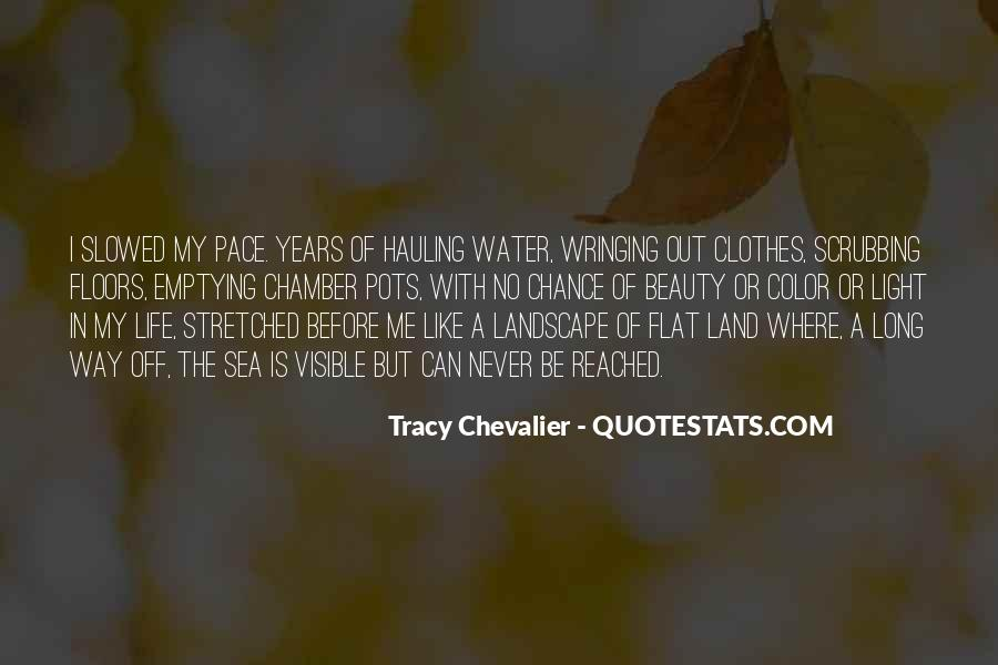 Tracy Chevalier Quotes #465663
